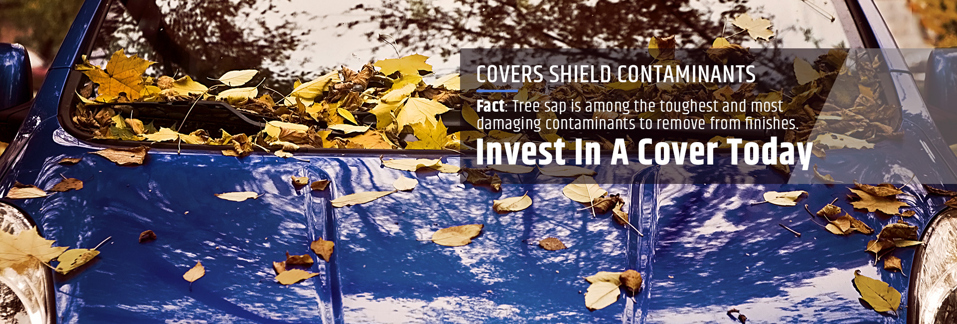 Covers shield contaminants